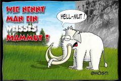 AAW-Hellmut-abg