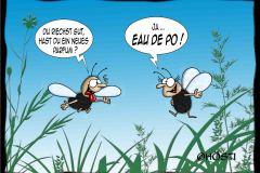 AAW Eau de Po abg