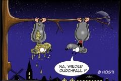 AAWdurchfall