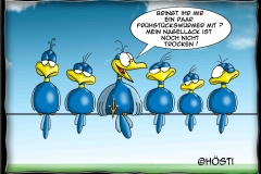HBB Nagellack