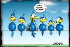 HBB-yoga
