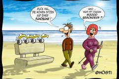 EK möwen auf ner sandbank frei