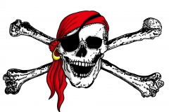 Piratenfahne 2013 offen