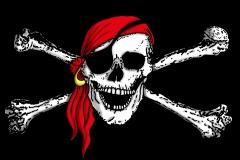 Piratenfahne schwarz 2013 offen