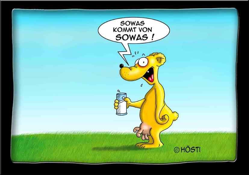 sowas