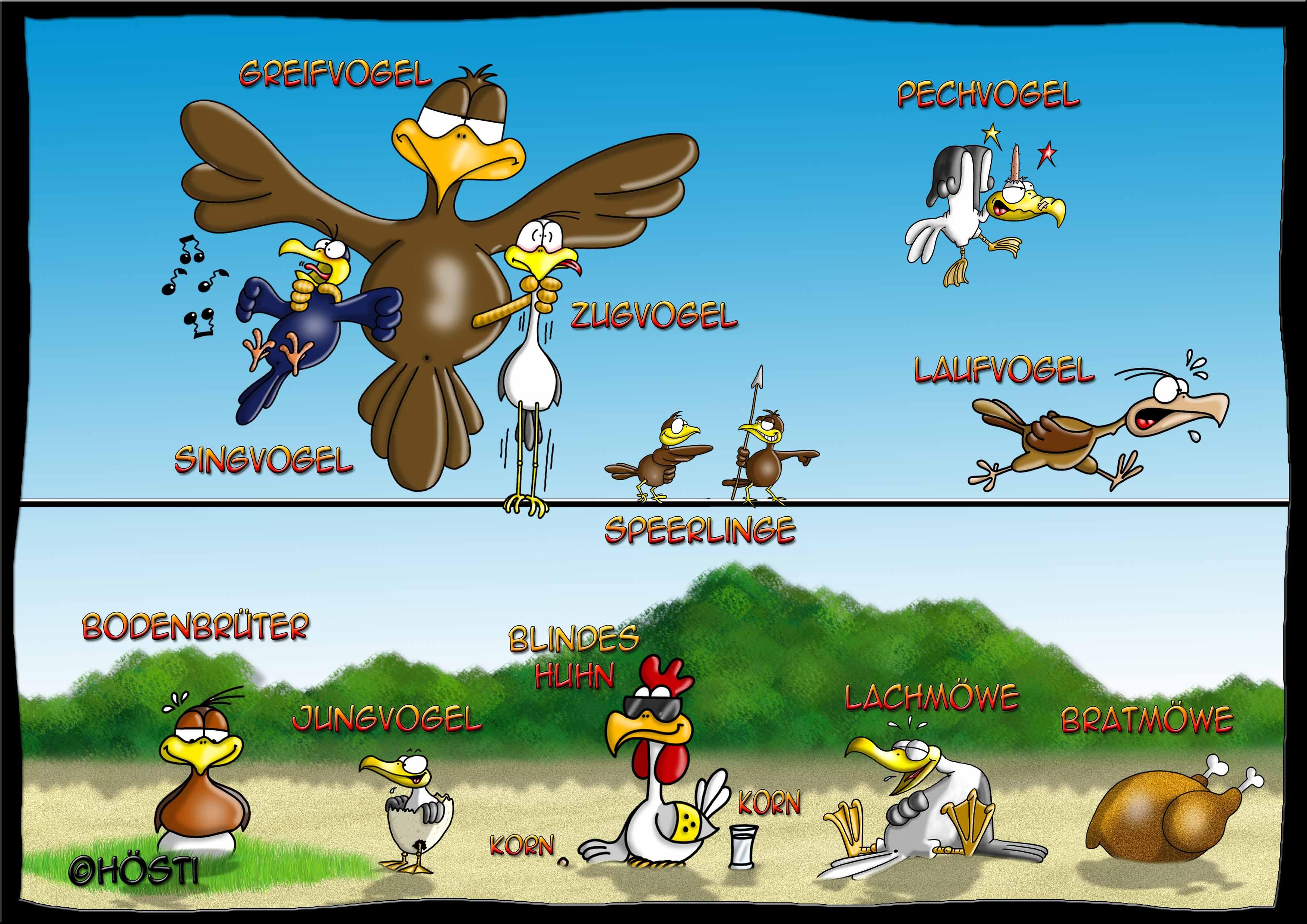 HBB-vogelarten