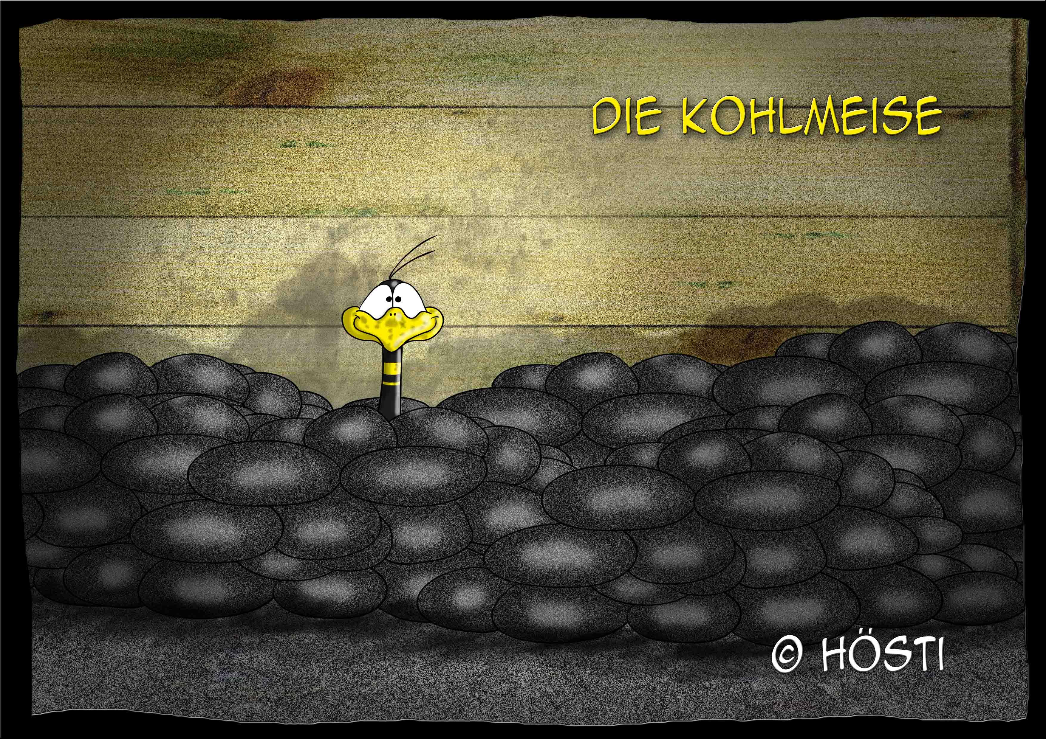 HVK Kohlmeise