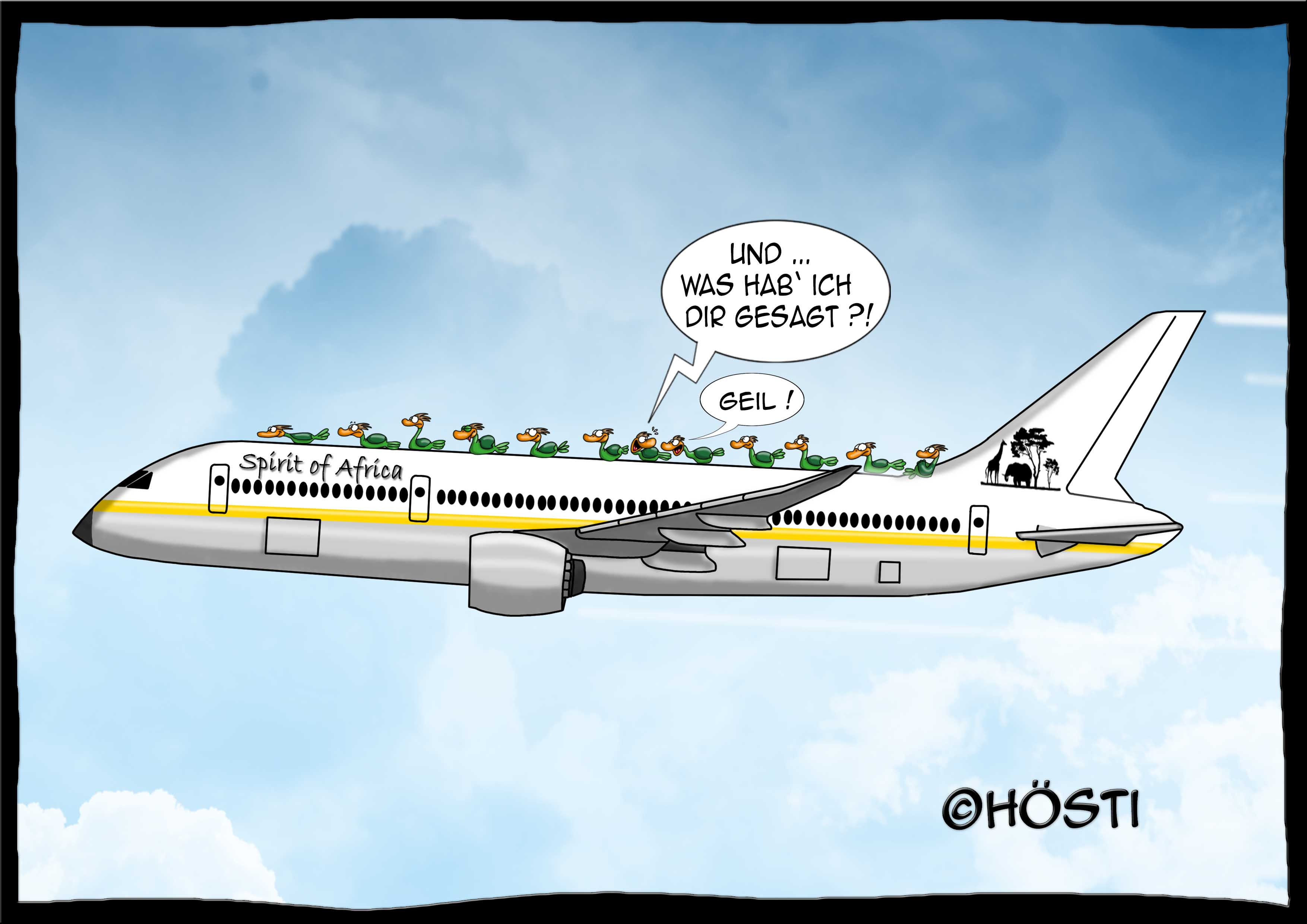 HVK zugvögel by airplane frei abg
