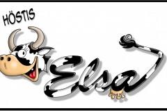 KE-001-Elsa-Logo