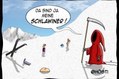 HKS schlawiner