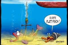 EK Plattfisch