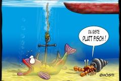 EKPlattfisch