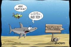 HUW Haitabu