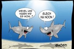 HUW-hai-noon