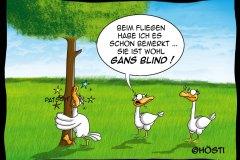 HVK-Gans-blind