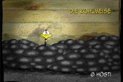 HVK-Kohlmeise