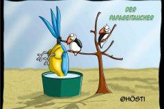 HVK-Papageitaucher