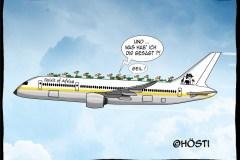 HVK-zugvögel-by-airplane-frei-abg