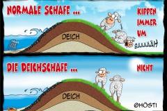 EK Deichschafe