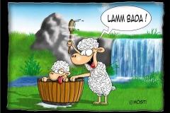 lamm_bada