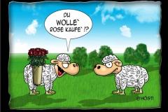 wolle_rose_kaufe